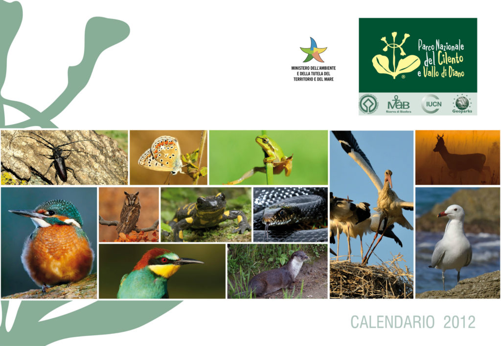 Geographica Srl - Calendario 2012