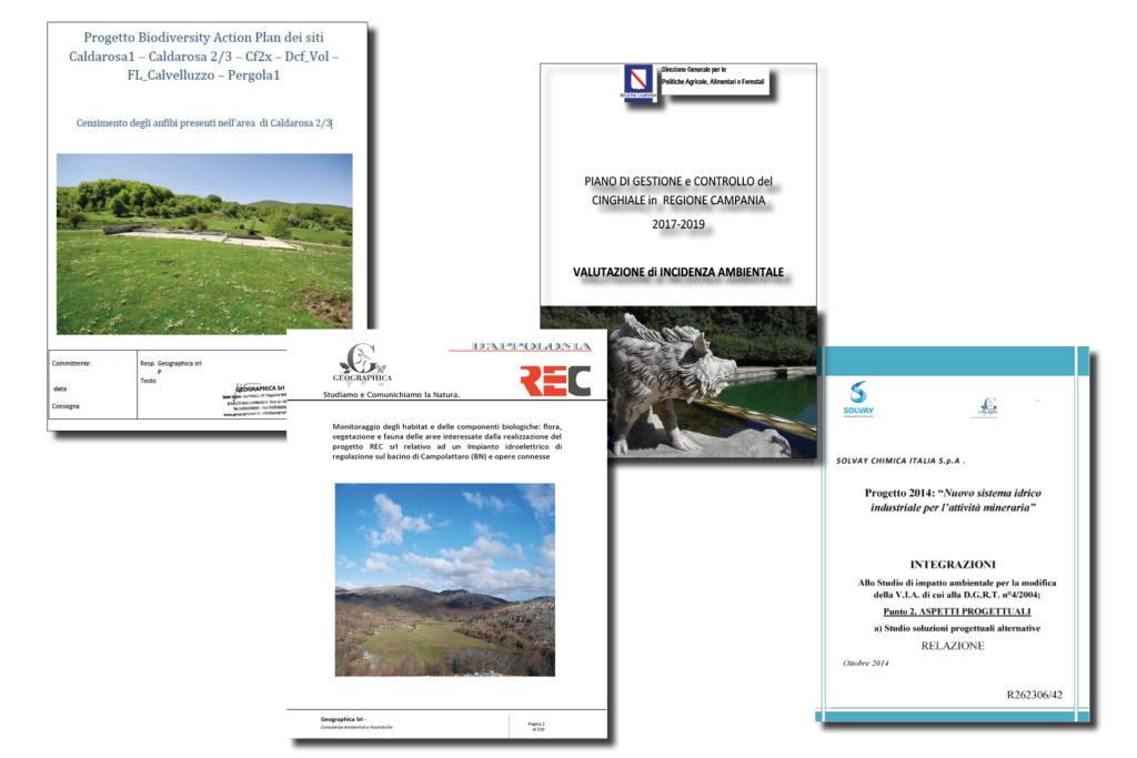 Progetti di monitoraggio ambientale
